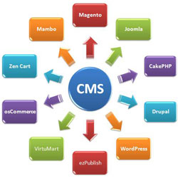 content_management_system.jpg